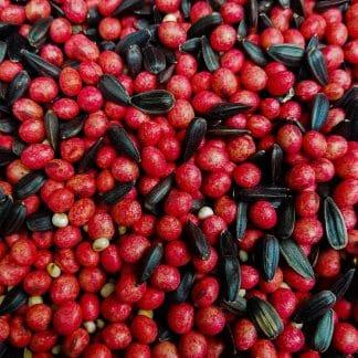 Food Plot Seed